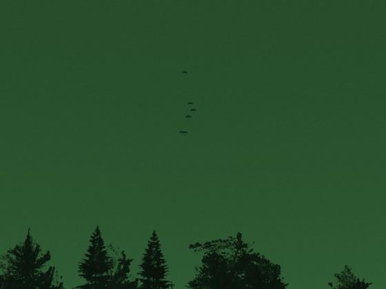 Fallschirmjäger im Anflug